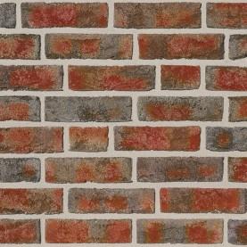 FORMBACK buntgeflammt 1/2 NF, 240x54x71 mm, hand-molded bricks